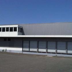 Location Entrepôt Le Blanc-Mesnil (93150)