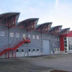 Location Local d'activités Furdenheim 945 m²