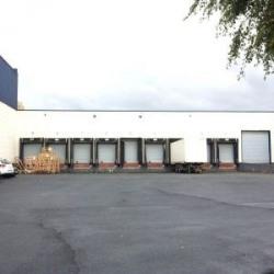 Vente Local d'activités Fretin 5366 m²