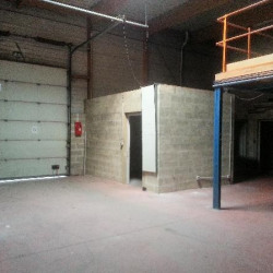 Location Local commercial Saint-Thibault-des-Vignes 1430 m²