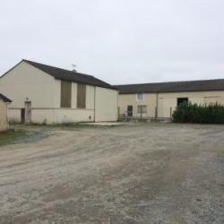 Vente Local d'activités Vern-sur-Seiche 244 m²