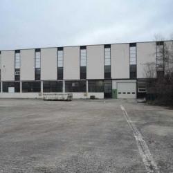 Location Local d'activités Argenteuil 3000 m²