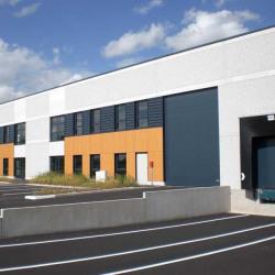 Location Local d'activités Saint-André-lez-Lille 1274 m²