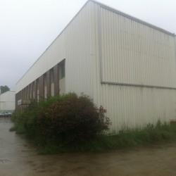 Location Entrepôt Les Clayes-sous-Bois 1100 m²