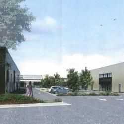 Vente Local d'activités Gouesnou 816 m²