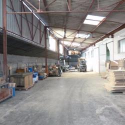 Location Local d'activités Saint-Jory 333 m²