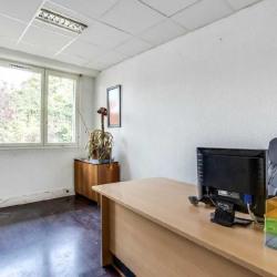 Location Bureau Ivry-sur-Seine 201 m²