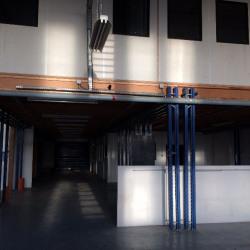 Location Local d'activités Montreuil 520 m²