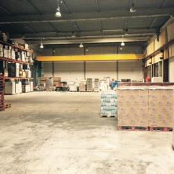 Location Entrepôt Ville-la-Grand 1310 m²