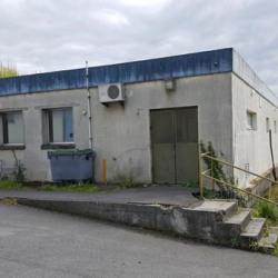 Vente Entrepôt Tournan-en-Brie 15656 m²