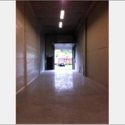 Location Local d'activités Brignais 125 m²