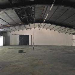 Location Local d'activités La Trinité 695 m²