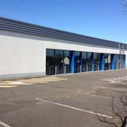 Vente Local commercial Nozay 1171 m²