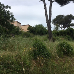 Vente Terrain La Seyne-sur-Mer 520 m²