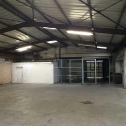 Location Local d'activités Roubaix 698 m²