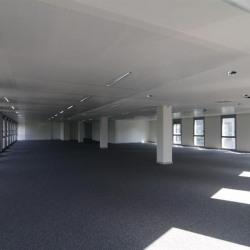 Location Bureau Lyon 8ème 5767 m²