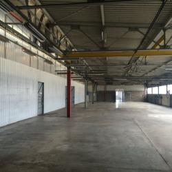 Location Local d'activités Aucamville 4615 m²