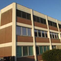 Vente Bureau Sausheim 594 m²