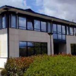 Location Local d'activités Trappes 185 m²