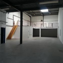 Vente Local d'activités Massy 410 m²