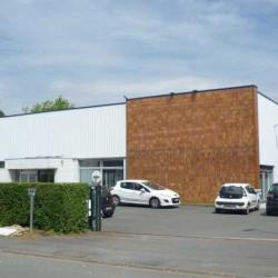 Vente Local d'activités Fretin 1045 m²