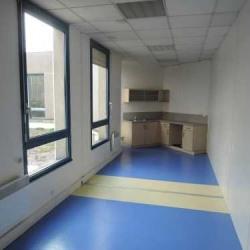 Location Bureau Le Plessis-Robinson 1168 m²