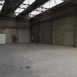 Location Local d'activités Stains 354 m²
