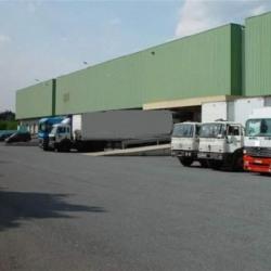 Location Entrepôt Lognes 24983 m²
