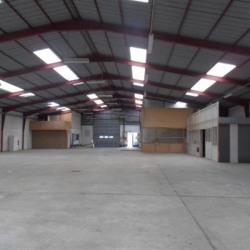 Vente Entrepôt Épouville 3600 m²