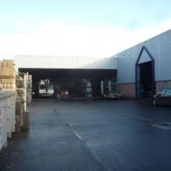 Vente Local d'activités Gretz-Armainvilliers (77220)