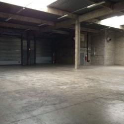 Location Local d'activités Saint-Thibault-des-Vignes 3354 m²