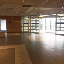 Location Bureau Villeneuve-Loubet 930 m²