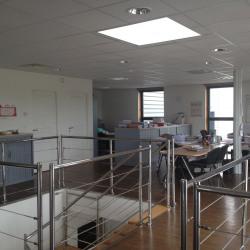 Location Local d'activités Saint-Jean-du-Cardonnay 576 m²