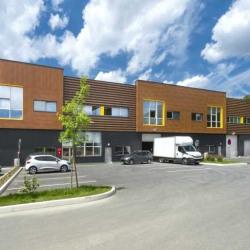 Vente Local d'activités Villebon-sur-Yvette 1837 m²
