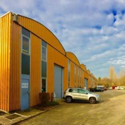 Location Local d'activités Dardilly 435 m²