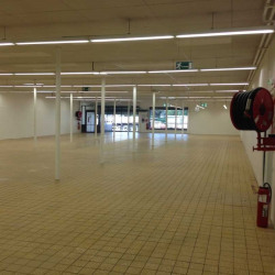 Location Local commercial Saint-Martin-d'Hères 790,55 m²