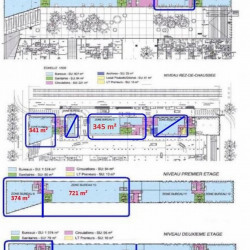 Location Bureau Lyon 2ème 2056 m²