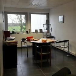 Location Entrepôt Chennevières-sur-Marne 1300 m²