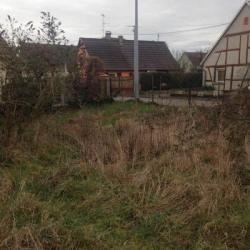 Vente Terrain Rumersheim-le-Haut 600 m²