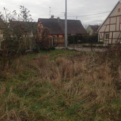 Vente Terrain Rumersheim-le-Haut (68740)