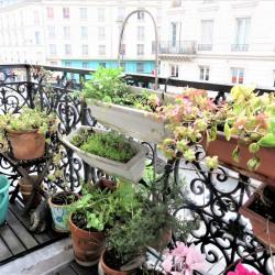 Vente Appartement Paris Gare du Nord - 56m²