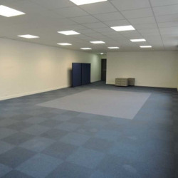Location Bureau Lognes 155 m²