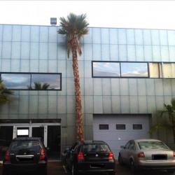 Location Bureau Mauguio 677 m²