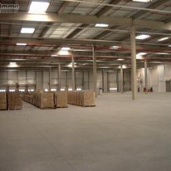 Location Entrepôt Compans 15410 m²
