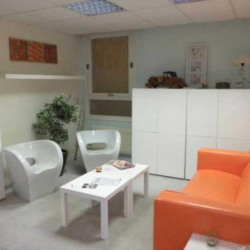Location Bureau Paris 8ème 249 m²