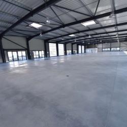 Location Local d'activités Escalquens 297,5 m²