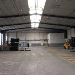 Vente Local d'activités Tours 1700 m²