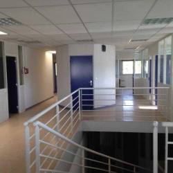 Location Entrepôt Cenon 1172 m²