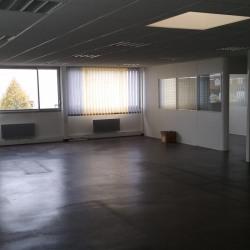 Location Local d'activités Villepreux 401 m²