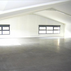 Location Bureau Domarin 63 m²